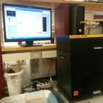 Cheung Lab, Day 8